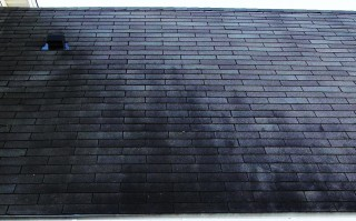The Black streaks on your roof are actually algae.