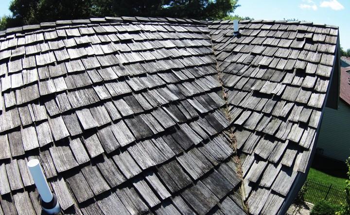 Cedar-Roof-1